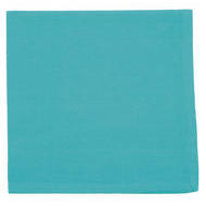 Now Designs Spectrum Napkin Turquoise